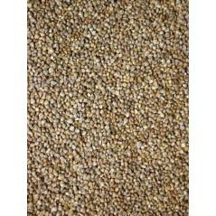 Graines de salade blanche (laitue blanche) 25kg - Grizo 103072150 Grizo 20,41 € Ornibird