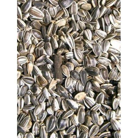 Tournesol Strié Large Marica/Toma 15kg - Grizo 103088150 Grizo 23,05 € Ornibird