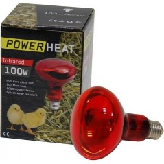 Ampoule infrarouge R80 230V 100W Rouge - PowerHeat 24140 Benelux 7,25 € Ornibird