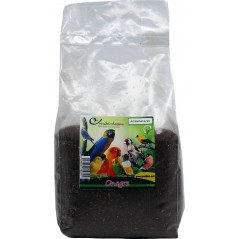 De zaden van de teunisbloem in kg 003717/kg Beyers 11,45 € Ornibird