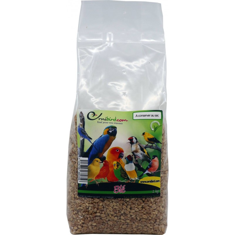 Wheat seeds (Wheat and White) to the kg - Beyers 002960/kg Beyers 1,10 € Ornibird