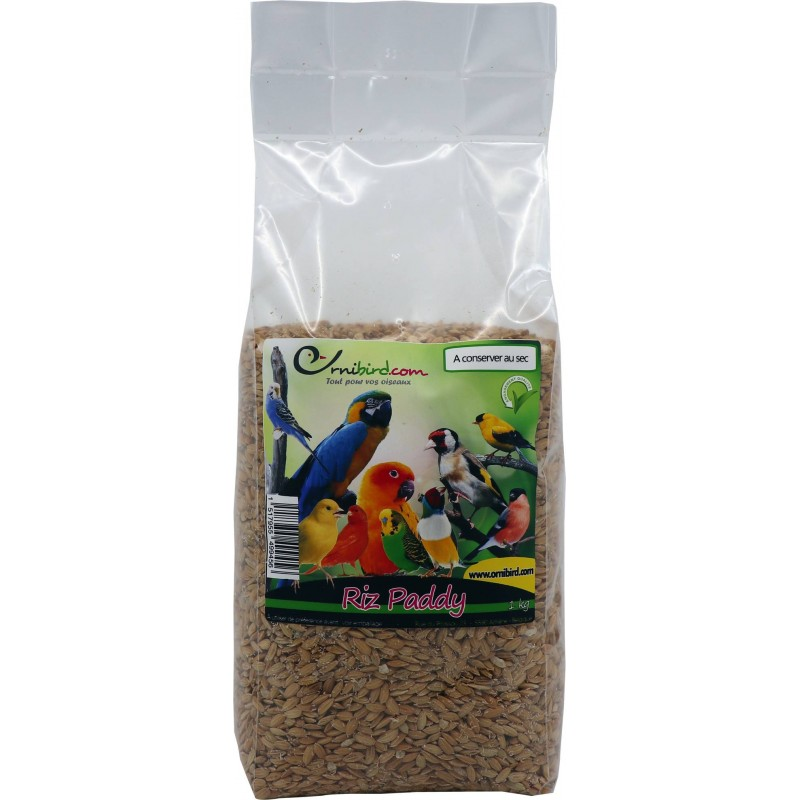 Seed of Rice Paddy in kg 103047250/kg Grizo 2,65 € Ornibird