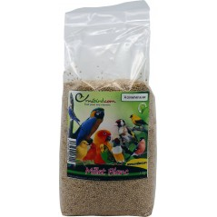Millet, White at kg - Beyers 002705/kg Beyers 1,99 € Ornibird