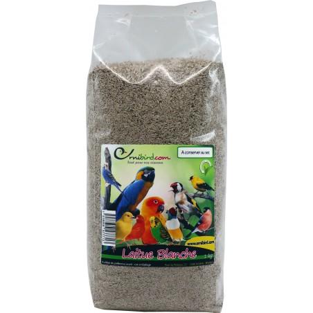 Lettuce seeds White in the kg - Grizo 103071250/kg Grizo 9,95 € Ornibird