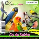 Os de seiche, qualité Prémium 500gr 1299001 Benelux 8,45 € Ornibird