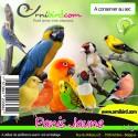 Panis Jaune au kg - Ornibird 103051200/kg Private Label - Ornibird 1,95 € Ornibird