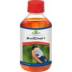 AviChol + 250ml - Avian 11570 Avian 9,85 € Ornibird