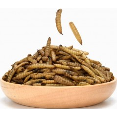 Fly Larvae, larves de mouches soldats sechées 500gr 10600 Private Label - Ornibird 9,45 € Ornibird