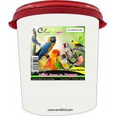 Millet en Grappes en seau de 5kg - Ornibird 700230 Private Label - Ornibird 31,95 € Ornibird
