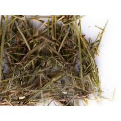 Matériaux Nids Psittacidés 250gr - Sisal Fibre PS36/250-20 Sisal Fibre 4,14 € Ornibird