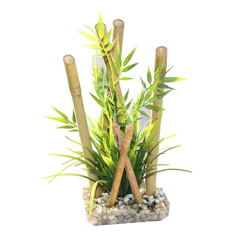 Bamboo large plants 25cm - Sydeco 349/400 Sydeco 10,65€ Ornibird