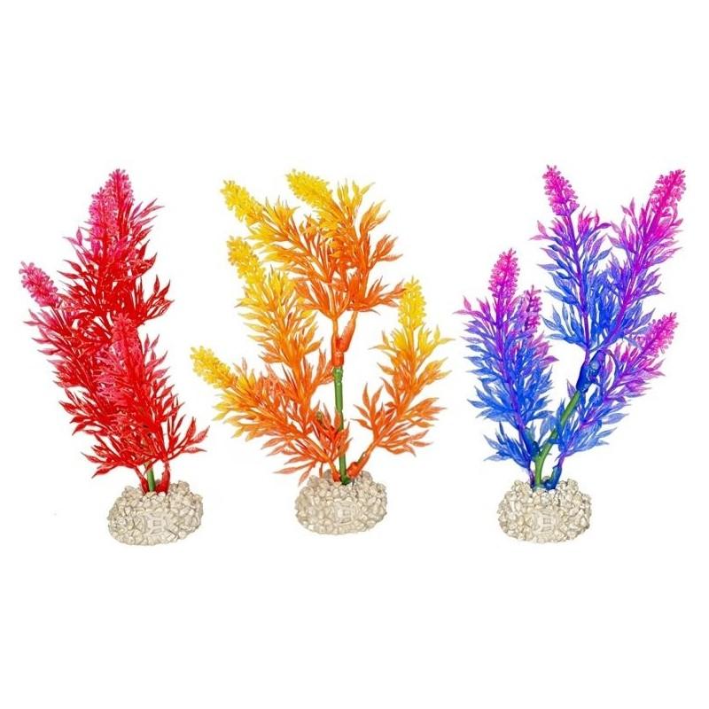 Plante Elodea Densa Fluo couleurs mélangées S 13cm - Aqua Della 242/457870 Aqua Della 3,60€ Ornibird