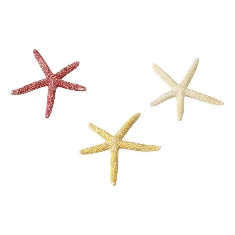 Starfish Mix S 10cm - Aqua Della 234/418918 Aqua Della 4,24€ Ornibird
