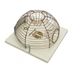 Trap - Dome in mice 34507 Benelux 6,23 € Ornibird