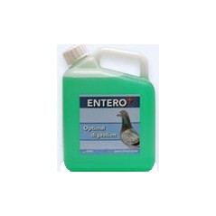 Entero (acides - digestion) 2,5L - Orthophar Pigeon - Pharmacie Flament & Dr. Vanneste