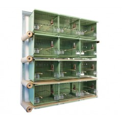 Batteries of 12 cages 45x30x36 green - New Canariz