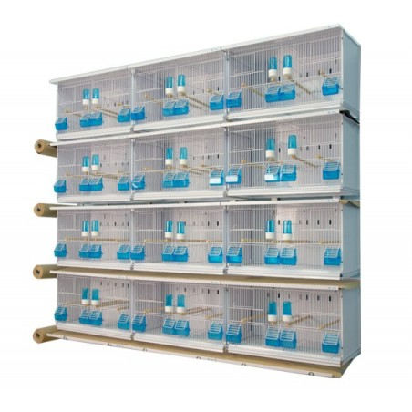Batteries of 12 cages 58x30x36 - New Canariz