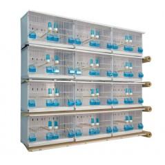 Batteries de 12 cages 63x30x36 - New Canariz