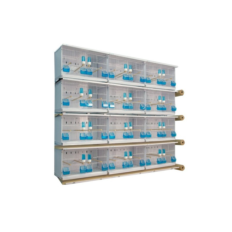Batteries de 12 cages 63x30x36 - New Canariz