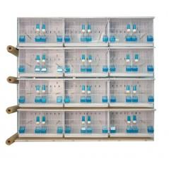 Batterie di 12 gabbie 63x40x40 - New Canariz