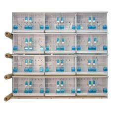 Batterijen van 12 kooien 63x40x40 - Nieuwe Canariz