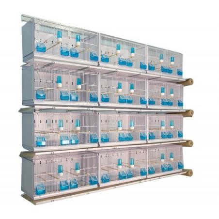 Batterij van 12 kooien 64x30x34 Model Kampioen - Nieuwe Canariz