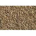 Hemp seeds small format of the kg - Beyers 002502/kg Beyers 3,72 € Ornibird