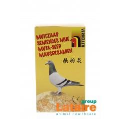 Seed-shedding 300g - Verhellen pigeons 51005 Verhellen 9,69 € Ornibird