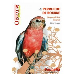 De Bourke Parkiet, een boek van 64 pagina ' s - Animalia Edities