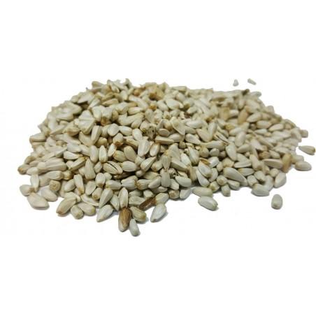 Graines de Cardi au kg