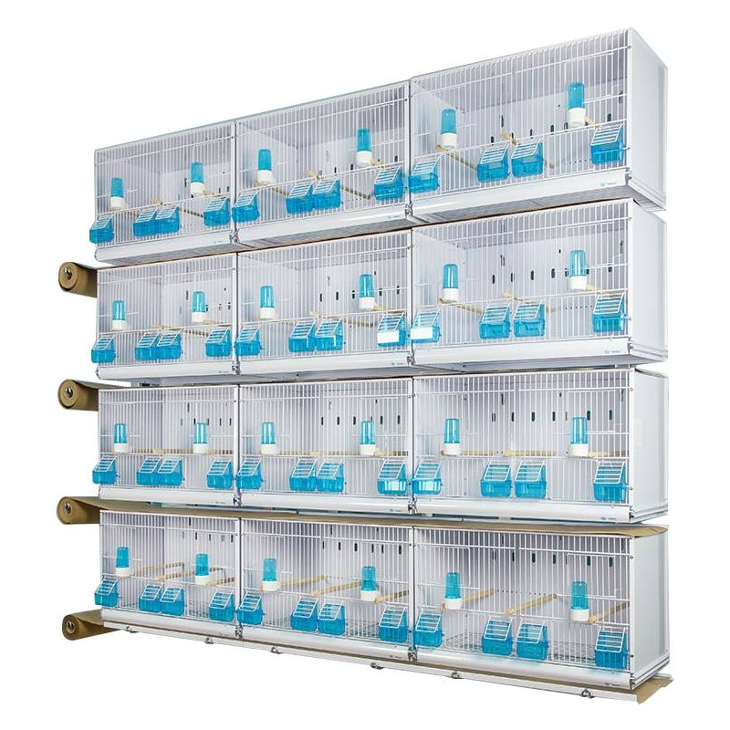 Battery of 12 cages 58x30x36 - Model Victoria - New Canariz 2850 New Canariz 866,95 € Ornibird
