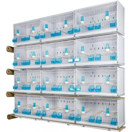 Batterie de 12 cages 58x30x36 - Modèle Victoria - New Canariz