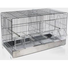 Cage Cova Metal 2 Compartments 55x32x37cm 1560056 Domus Molinari 38,50 € Ornibird