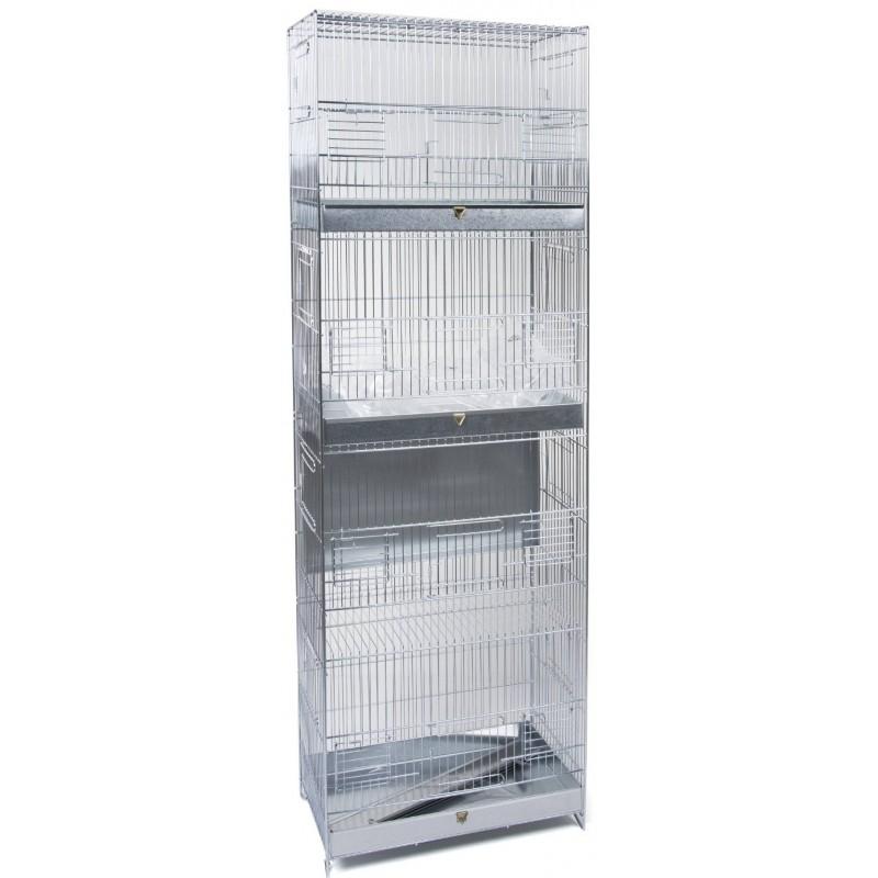 Cage Cova 4-storey 39x23x114cm 1560053 Domus Molinari 99,95 € Ornibird