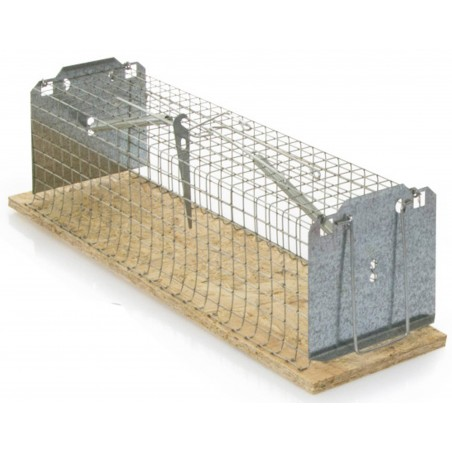 Trap - Trap rats, 2 compartments