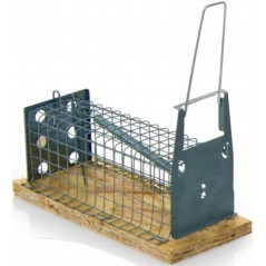 Armadilha - a Armadilha do rato 1 compartimento
