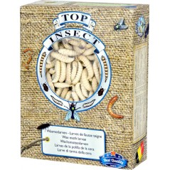 Moths of Hives (insects frozen) 450gr - Top Insect TOPINS-TEIGNE Nusect Top Insect 26,93 € Ornibird