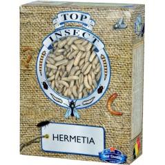 Hermetia (insectes congelés) 500gr - Top Insect