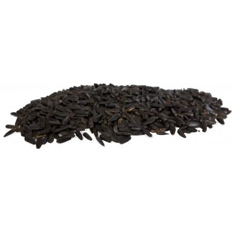 Graines de Tournesol Noir Piccolo au kg