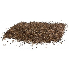 Seeds of Chicory to the kg - Beyers 003705/kg Beyers 4,95 € Ornibird
