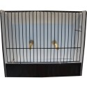 Cage exposure canary black PVC