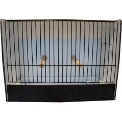 Cage exposition caille noir en PVC