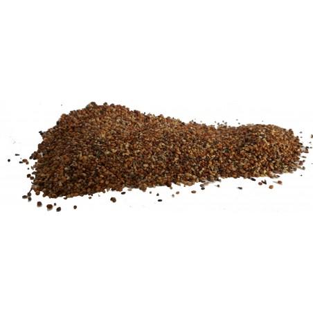 Graines de Plantain au kg