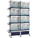 Batterie de cages Orchidea ART.64 avec système de rouleau de papier - Italgabbie
