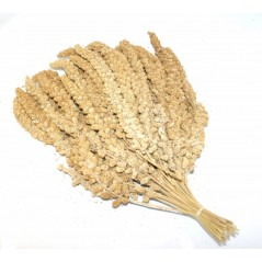 Millet jaune en grappes chinois 15kg 103075150 Grizo 52,00 € Ornibird