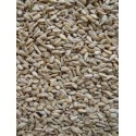 Sunflower husked rice in kg 103089250/kg Grizo 3,00 € Ornibird
