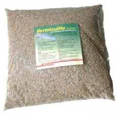 Vermiculite, substrate for egg incubation of reptiles 5L - Lucky Reptile 762226000 Grizo 5,99 € Ornibird