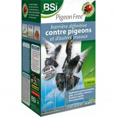 Barrière définitive et écologique contre les pigeons et d'autres oiseaux