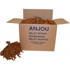 Millet Rouge en grappes Anjou 25kg 1181011 Benelux 127,95 € Ornibird