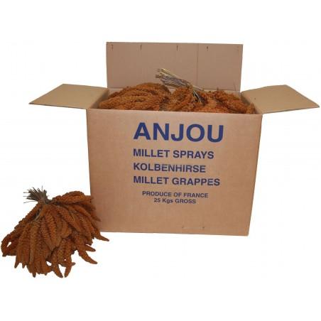 Millet Rouge en grappes Anjou 25kg